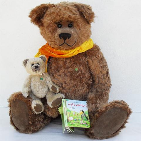 Geschichtener - Martin Bears