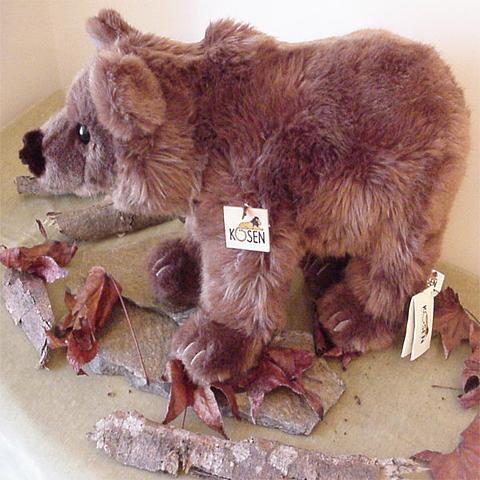 Brown Bear - Kosen