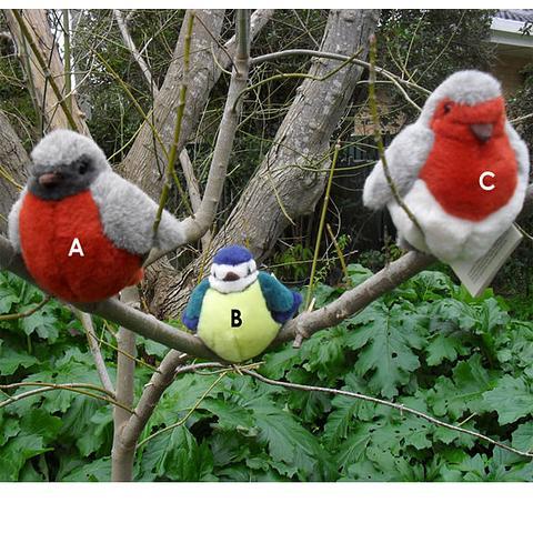 Birds - Kosen
